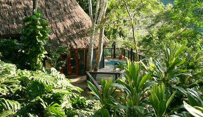 exterior jungle setting_400_230